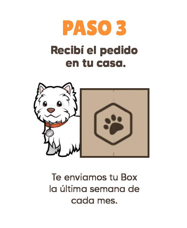 Pasos Patitas Box-03 (1)